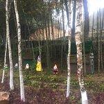 Shaoguan Xiaokeng National Forest Park
