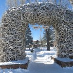 Antler arches into the square - very unusual!