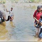 Bathing elephants and vice-versa