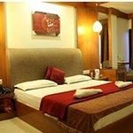 hotel_driftwood_large.jpg