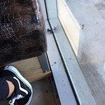 Dead flies