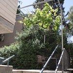 Beit Ben Yehuda Photo