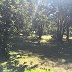 Photo of Cabanas Metrenehue - Parque Metrenehue