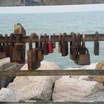 Porto Turistico Marina di Cattolica Foto