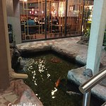 Entrance and window to Crazy Buffet, pretty koi pond in front.