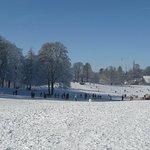 Gurtenwiese im Winter