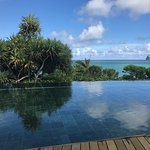The view from the infinity pool