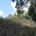 Photo of MexiGo Tours