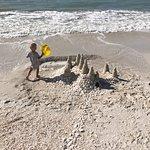 Удивительный пляж! Миллионы ракушек!