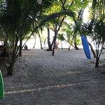 Foto de Arenas del Mar Beachfront and Rainforest Resort, Manuel Antonio, Costa Rica