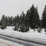 Our day to Crater Lake...2 foot of snow!
