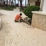 Photo of Ambassador in Paradise Resort