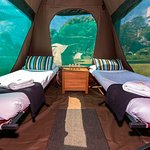 Glamping tent - two single bed configuration