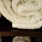 towel with a few black hairs on it