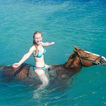very refreshing, and the horses loved the water I think