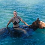 The horses make a peculiar grunting sound when swimming...something I didn't know.