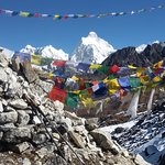 kanchenjuga trek is one of famous trek in Nepal which called five peaks over 8000min kanchenjug