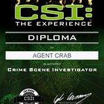 Foto di CSI: The Experience