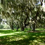 Fort Frederica National Monument grounds
