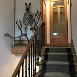 We took the stairs on our travels, and enjoyed the decorations even there!