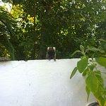 Photo of Pousada Lua Cheia