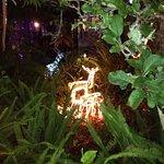Déco lumineuse dans le jardin