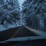 Heading Home to Canyon Wren from Sedona