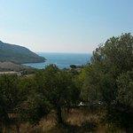 Photo of B&B Baia di Trentova