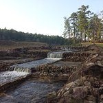 Boykin Springs at Angelina National Forest