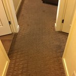 carpeting unit 18101, coming from bedrooms to living room