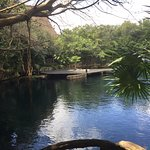 Another view of the cenote where snorkeling and other activities were available daily.