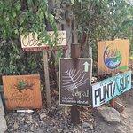 Los letreros que indican la subida a Punta Cometa desde la calle de Mazunte
