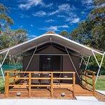 Safari Tent Shoal Bay Holiday Park