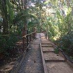 Palmar Beach Lodge Foto