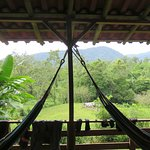 View and hammocks from our room