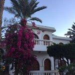Foto di Christina Beach Palace
