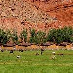 Ferienhäuser direkt am Colorado River