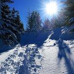 Schneeschuhwanderung Natur