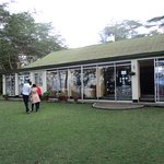 Elsame accommodation best in Naivasha and near the Olkaria