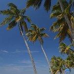 Sea Splendour Beach Resort