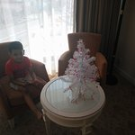 Christmas tree in the room