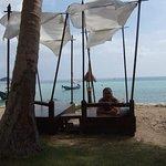 Koh Tao Cabana Foto