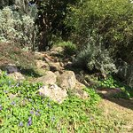 Photo of Kibbutz Inbar Country Lodging
