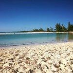 Photo of Gran Caribe Club Coral