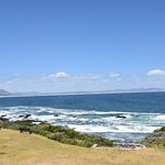 Photo of The Marine Hermanus