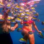 Photo of Snorkel Adventure CR