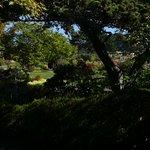 Photo de Mendocino Coast Botanical Gardens