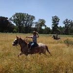 Daniel being a real cowboy.