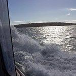 Traveling the ocean