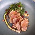 albacore tuna sashimi fennel, apple & gin puree, shallot, pomegranate and white miso